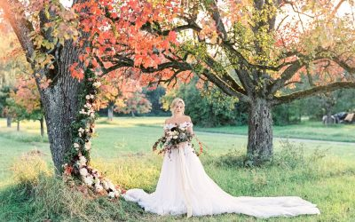 Künstlerinterview: Die Hochzeitsfotografen Angelika und Artur